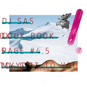 DJ Sas/CookBook page #4.5 ~MY GIFT TO YOU REMIX~