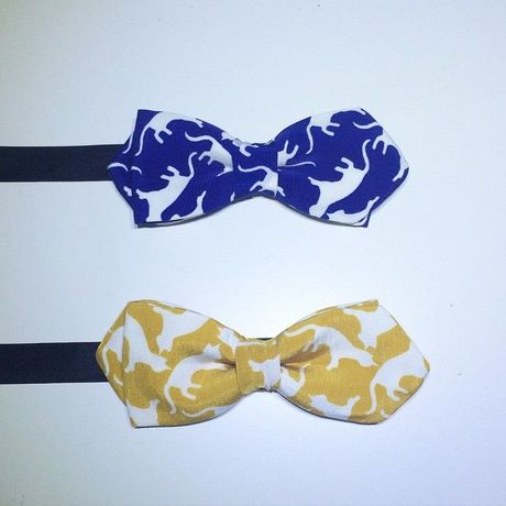 Cats bow tie