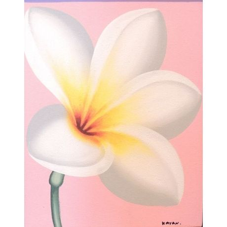White Plumeria on Pink (Green Stalk)