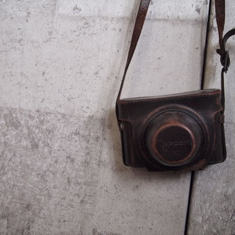 Antique camera case