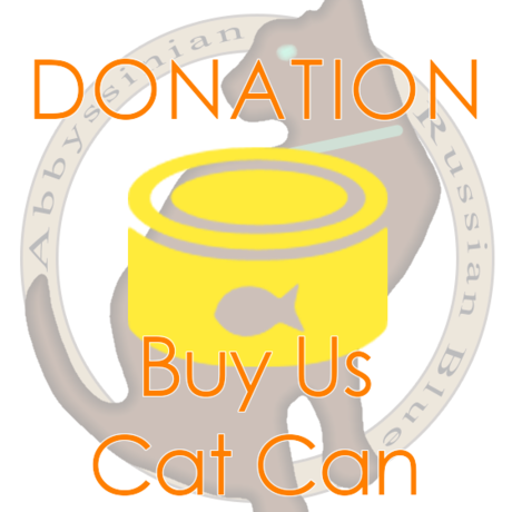 """DONATION """"Buy us Cat Can"""""""