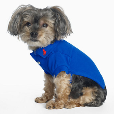 Ralph Lauren Dog Polo