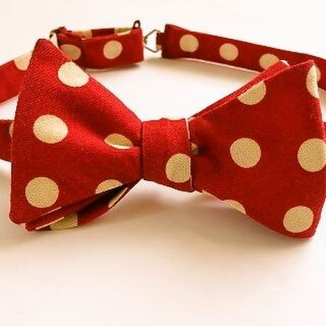 蝶ネクタイbowtie strawberry
