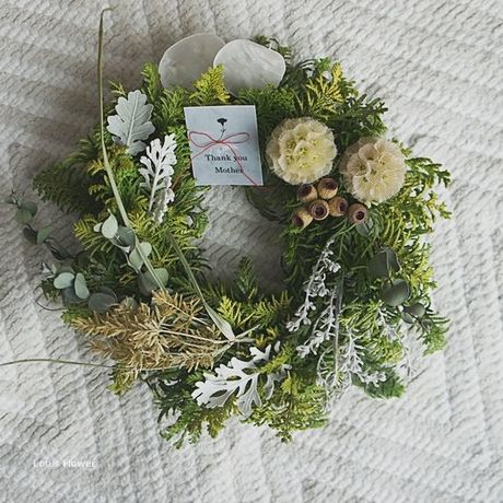 Fresh Greenwreath Scabiosa