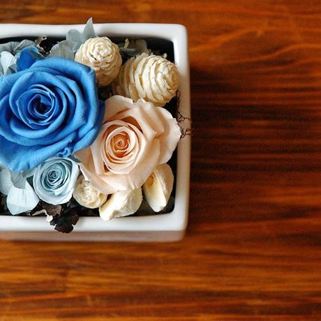 *Marine*  preserved flower arrangement