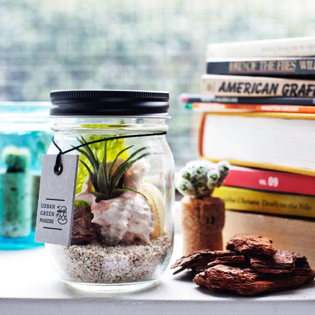 GLASS JAR TERRARIUM KIT 01(URBAN GREEN MAKERS)