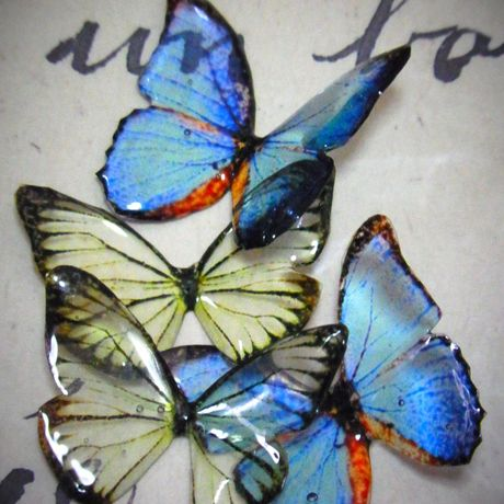 jewel butterfly earring