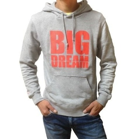 BIG DREAM (Gray)